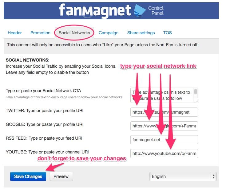 FanMagnet_tabs_socialnetworks_step2